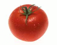 Tomato-Picture