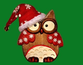 Owl-in-hat
